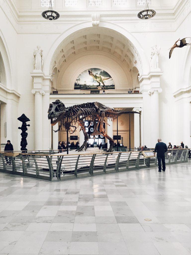 恐竜のバースデーパーティー