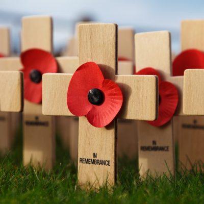 【Remembrance Dayと赤いポピー】私がイギリスで一番嫌いな日