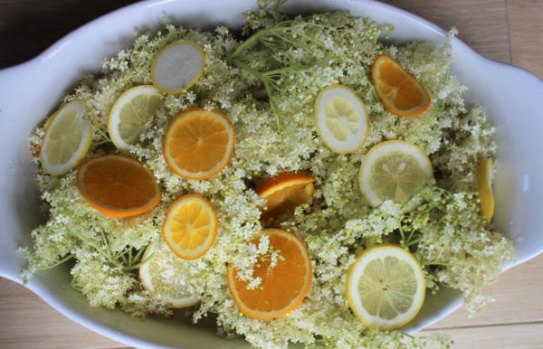 熱いシロップにエルダーフラワーを漬けて、香りをシロップに移す。